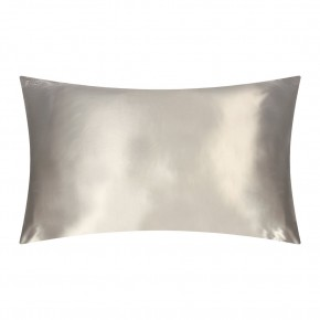 Slip Silk Pillowcase Silver Queen Size Limited Edition