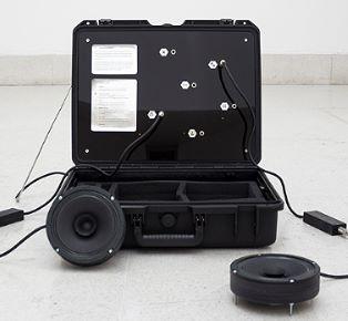 The Network Ensemble Discover the hidden sound